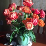 Double tulips and ranunculus - favorite colors
